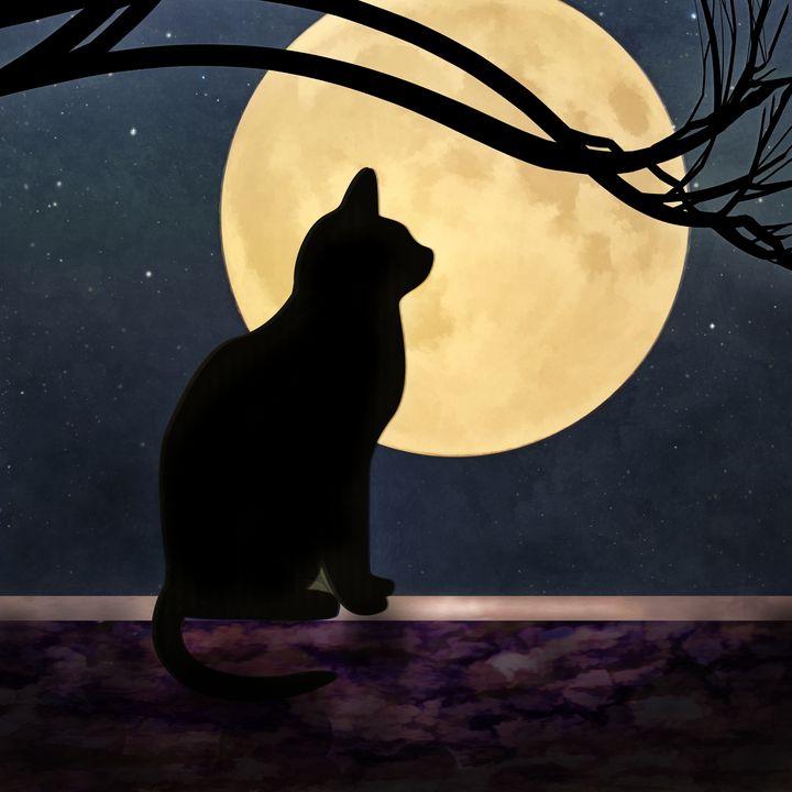 Félix et la lune - Jon Woodhams