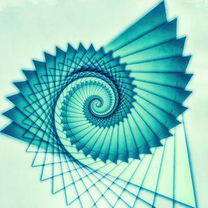 Composition de Nautile - Jon Woodhams