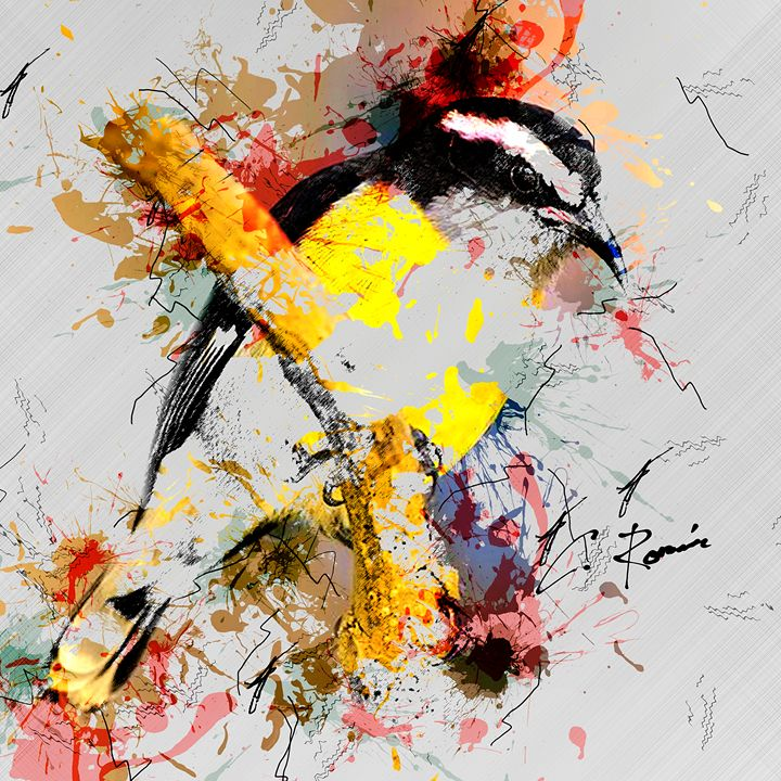 Reinita (Bananaquit) - CDR Digital Arts