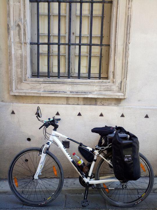 The Bike - Erin Lynne