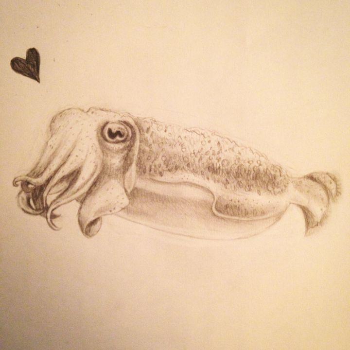 CUDDLE FISH - Introintro