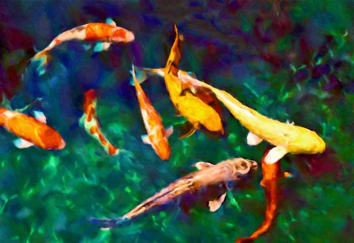 Japanese koi swim and play in a clea - Susan Maxwell Schmidt Visual Fine Art