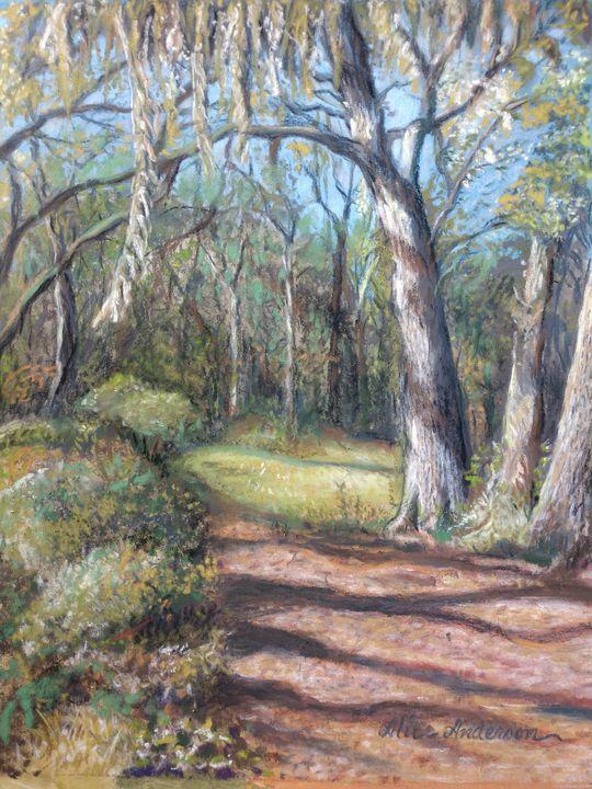 Brookers Creek Preserve - Alice Artist Studio