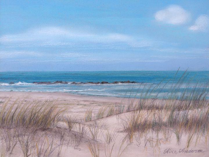 North Beach on Honeymoon Island - Alice Artist Studio