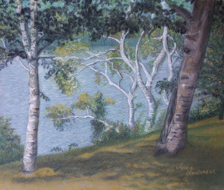 Paper Whites in Norton Pond - Alice Artist Studio