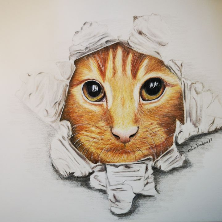 """""""CAT OUT THE BAG"""" - Deliasart"""