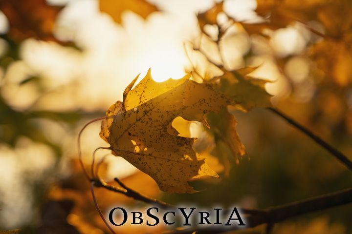obscyria 9 - Obscyria