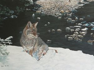 MOUNTAIN STREAM WITH COYOTE detail