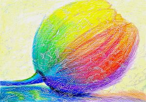 цвета радости (colors of joy)