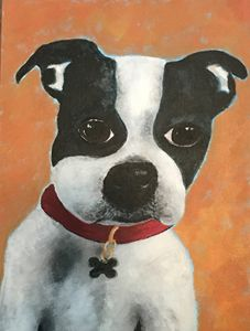 Boston Terrier Acrylic on Canvas