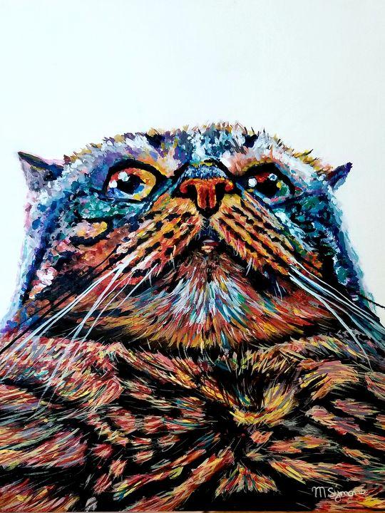 Cat Selfie - Melissa Symons