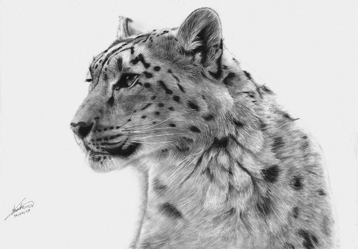 Snow Leopard - G. A. Art