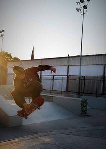 Skater Dream - Pita