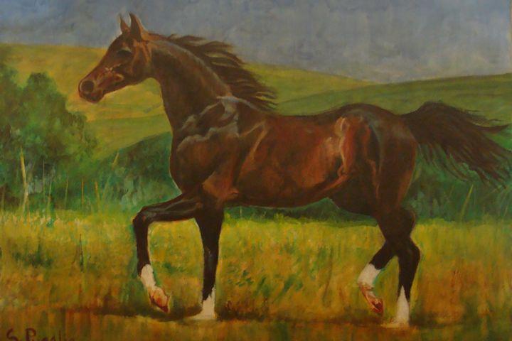 Gallop - Shikha Pugalia