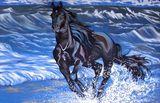 6ft x 4ft Black Horse