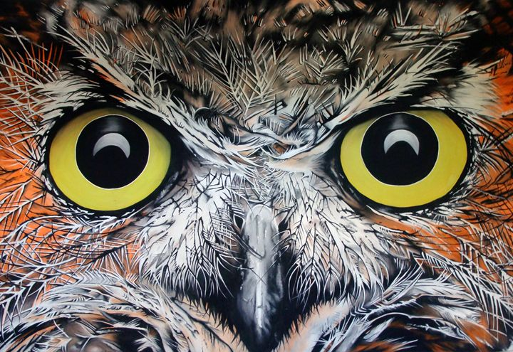 Ever looked into an owls eye's? - EarthArt
