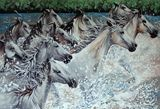7ft x 4.5ft approx White Horses on c