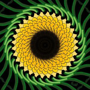 Radial Sunflower S