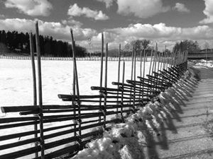 Swedish wooden fence