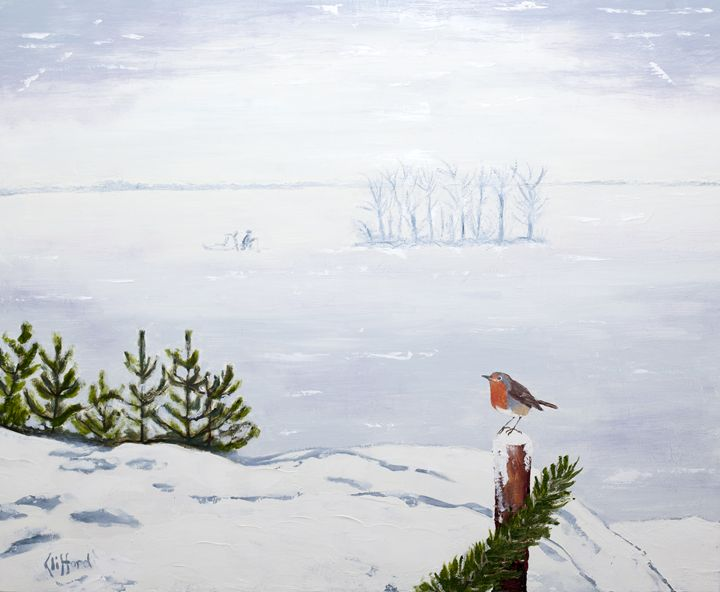 Frozen Lake with Robin - clifford shirley