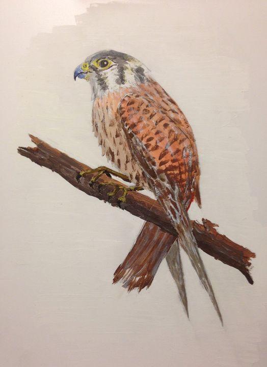 Fulcon - clifford shirley