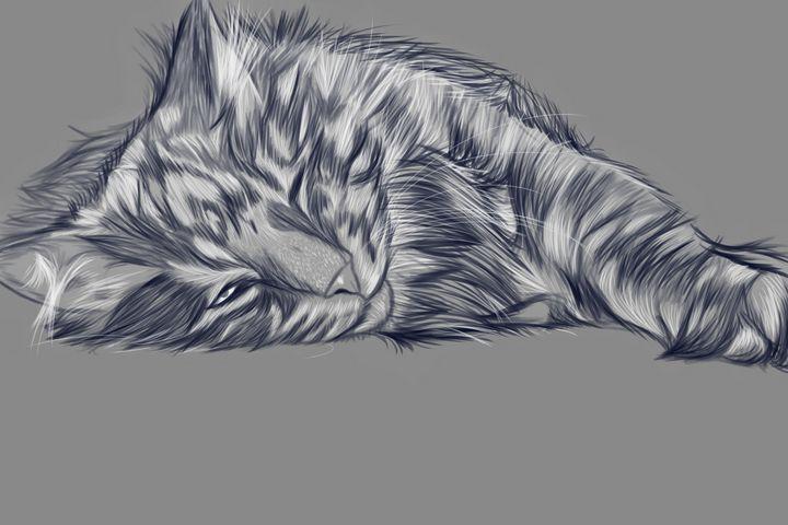 Norwegian Forest Cat - Jayden Owens