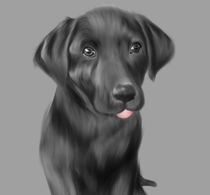 Black Lab Pup - Jayden Owens