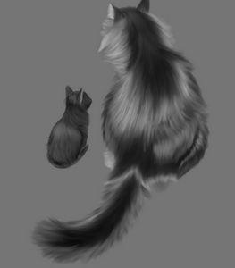 Big & Little Cats