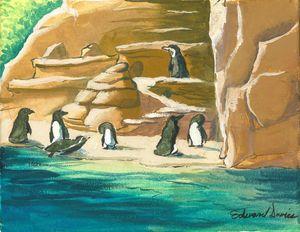 Penguins of Woodland Park Zoo