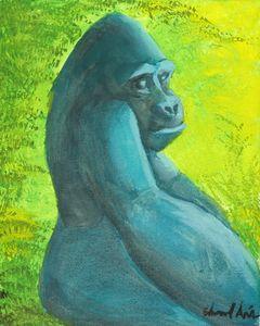 Gorilla Looking Over