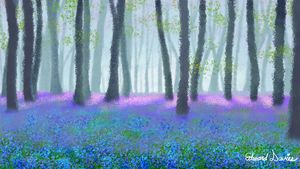 Bluebell Woods - Artwork by Edward T. Davies