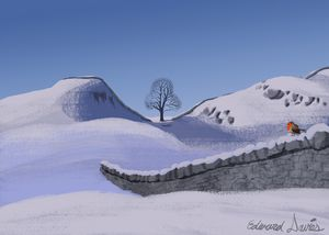 Sycamore Gap Tree in Winter - Artwork by Edward T. Davies