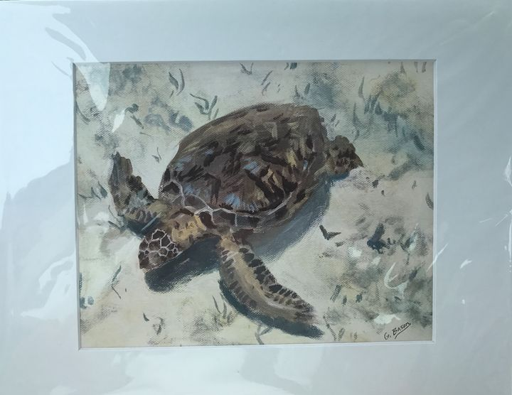 Turtle Bottom - George Bason Art