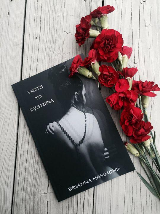 Visits To Dystopia - Brianna Hammond