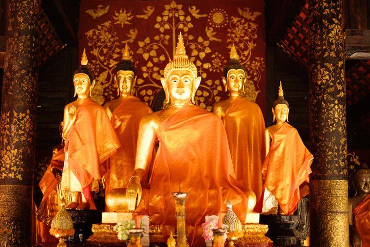 golden buddha - nattapatt