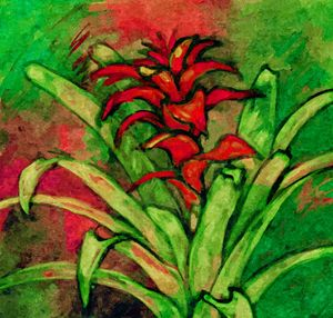 BLOOMING BROMELIA IN RED AND GREEN - Brazilian Painter