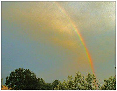 Rainbow Fog - GBFoto