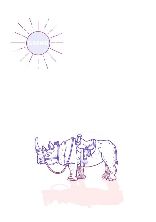 Rhino saddale - shanecdstoneart