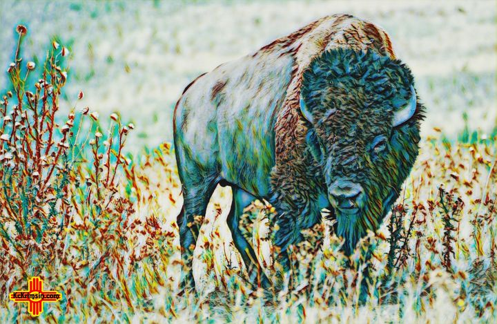 Blue Buffalo Plains by KC Krimsin - The KC Krimsin Kollection