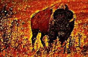 Burning Buffalo Plains by KC Krimsin