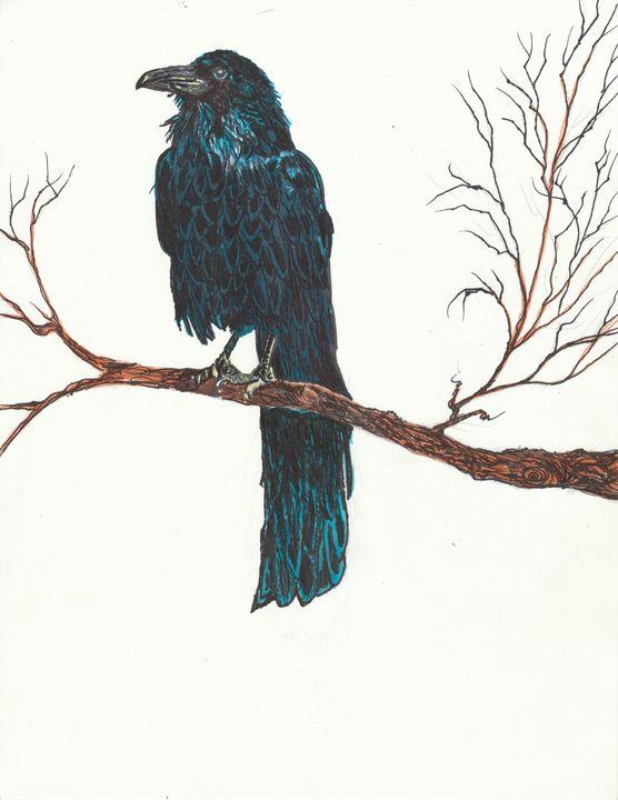 The Sentinel Crow by KC Krimsin - The KC Krimsin Kollection
