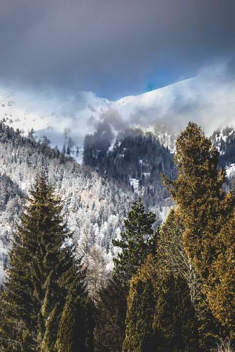 Mountain Landscape in Sinaia, Romani - Alexandru Busca
