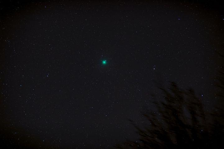 Comet 46P Wirtanen - 4 AM Photography