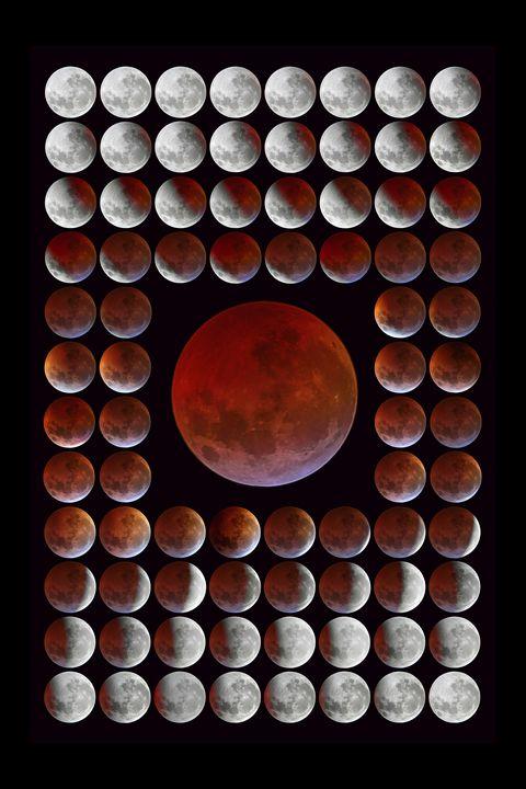 Lunar Eclipse Series Time Lapse - 4 AM Photography