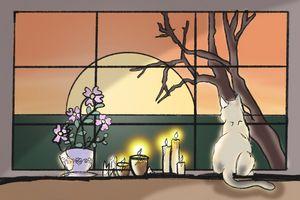 Wiccan Cat Sunrise