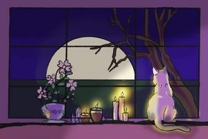 Wiccan Cat Sunset