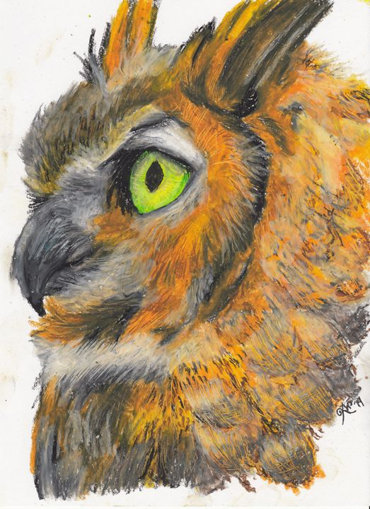 Owl - KristenWilsonArt