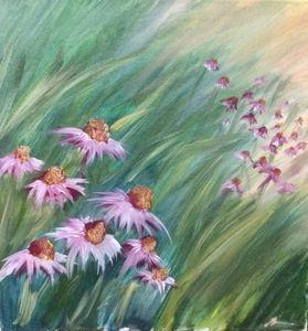 in the field of echinaceea