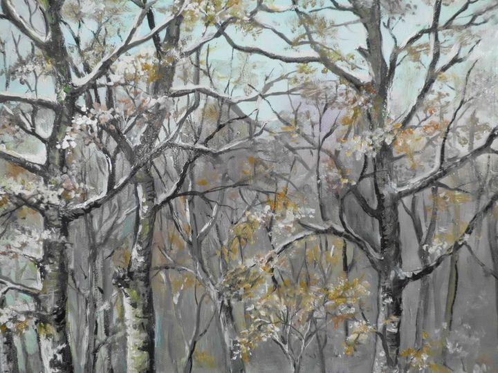 Tree crowns in the forest in winter - Edy Art Gallery