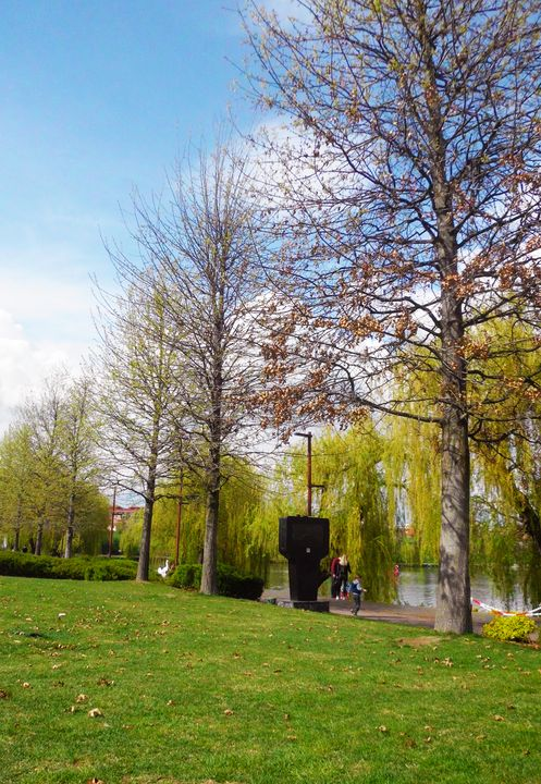 spring in the park - Edy Art Gallery